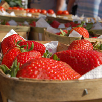 Colleyville Farmers Market Returns This Spring